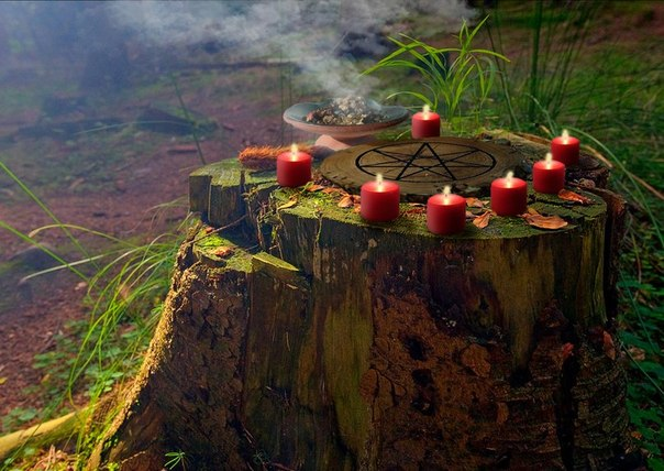 заговор на похудение на зеленый чай отзывы
