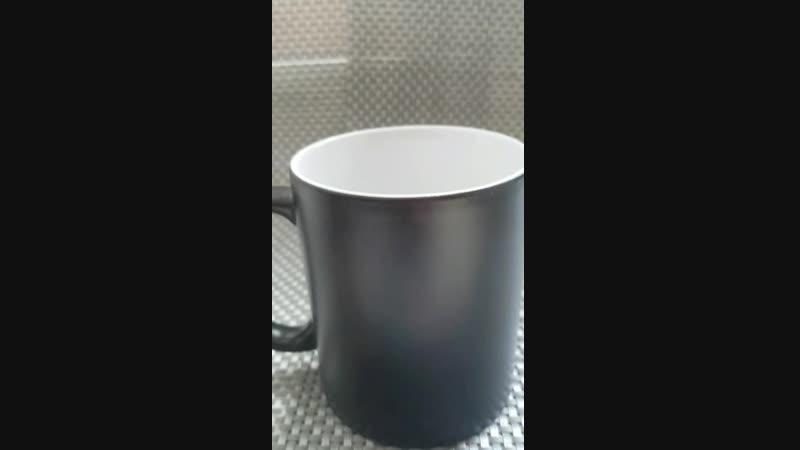 кружка Хамелеон чёрный цена 500руб