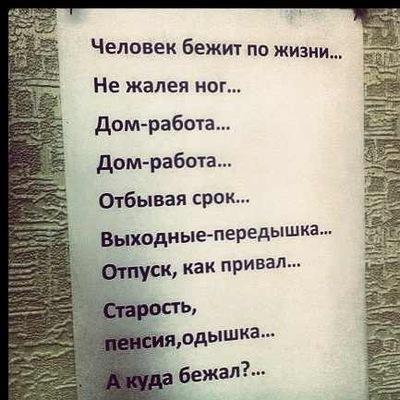 Светлана Шипицына, 25 июня , Пермь, id17156678