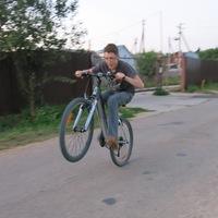 Николай Виноградов