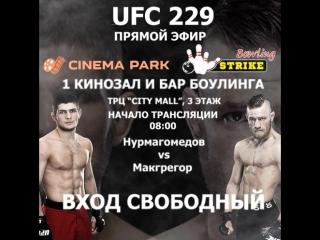 ПРЯМОЙ ЭФИР БОЯ UFC 229.