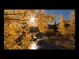 Gal Abutbul &amp Sarah Russell - You Have Realised (Uplifting Remix)