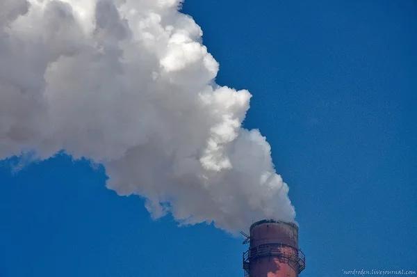 Разница между паром и дымом