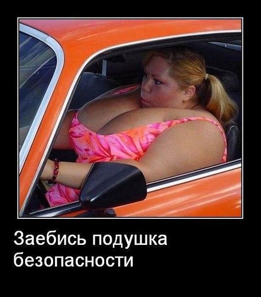 http://cs405521.userapi.com/v405521433/484/SGZIcQtJaMg.jpg