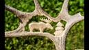 Резьба по рогу лося. Резьба по кости. The carved horn of elk. Bone carving