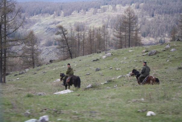 Местные фермеры катаются на лошадях. Только что поднялись по Кату-Ярыку и держат путь прямиком вниз.