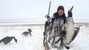 Охота на гусей 2018