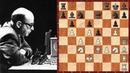 Шахматы Бронштейн Comp ZARKOV красивая ЖЕРТВА ФЕРЗЯ против компьютера