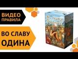 Во славу Одина — настольная игра ¦ Видео правила 🍗🍄🍺