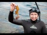 Какой на вкус морской еж и морской гребешок? Фридайвинг. Териберка. Мурманск