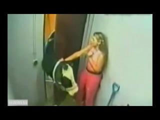 Корова напугала девушку и девушка напугала корову. Ржака. Смешно. Приколы про животных. Хохма+#$@*.