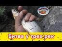 Рыбалка в Горном Алтае. Битва у трех рек.