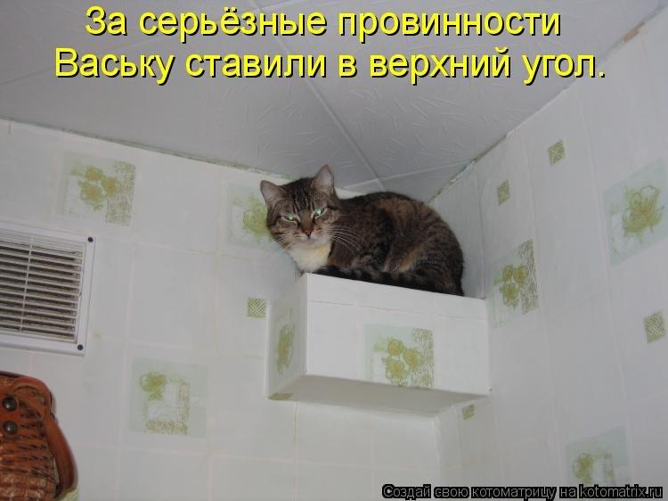 http://cs419718.userapi.com/v419718085/cb9/IJxJ2jZPU04.jpg