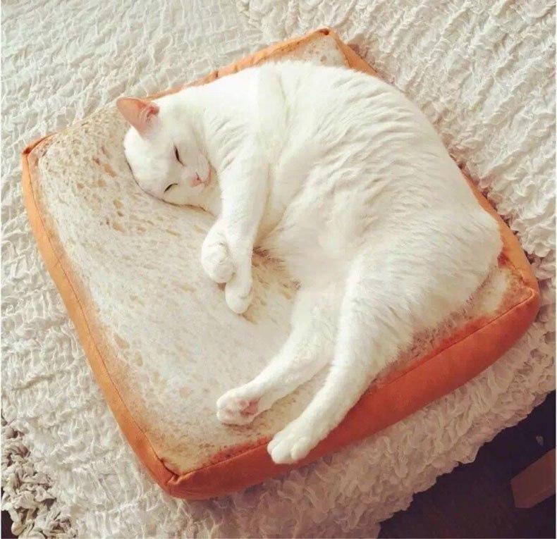Лежанка для котика -
