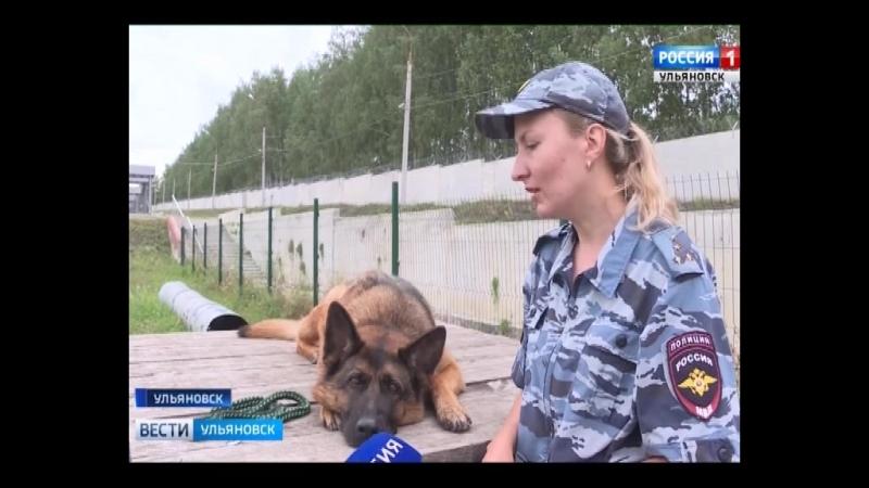 ВГТРК Волга от 10.08.2018