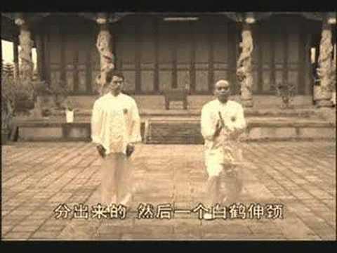 Yong Chun White Crane Pan Ba Fa