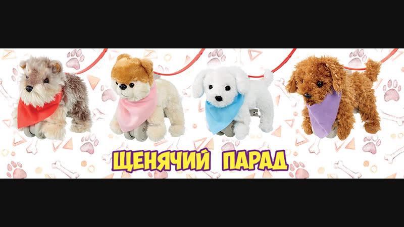 Go Puppy Go!