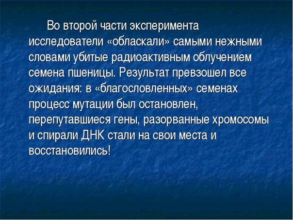 http://cs319923.vk.me/v319923431/718d/QZ-5s1KAYyw.jpg