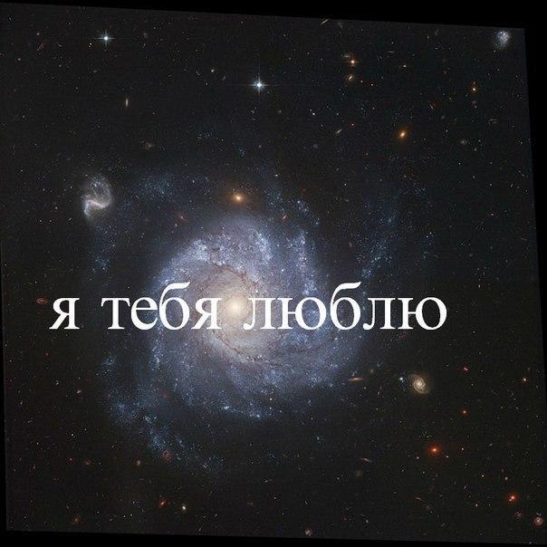 ivi ru