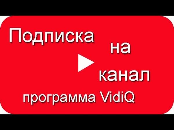 Подписка на канал в Ютубе, Программа VidiQ