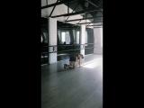 Twerk? Анастасия Жильцова, МК в DANCE HALL