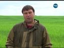 Исследование полей на наличие сорняков и вредителей