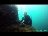 Diving club Sprut