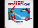Шерлок Гномс - Гунсы