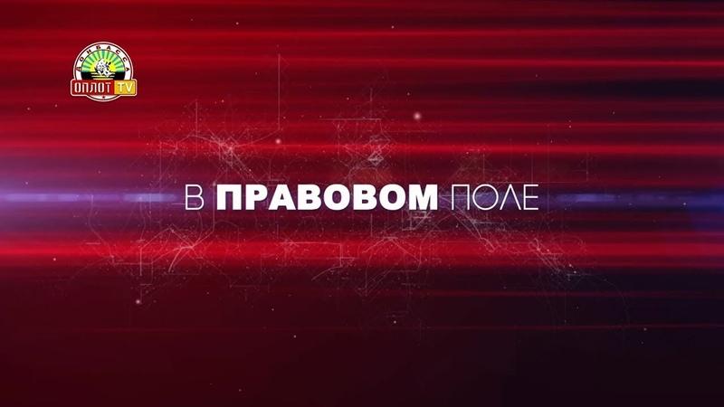 «В правовом поле»: Памяти Арсена Павлова Моторола