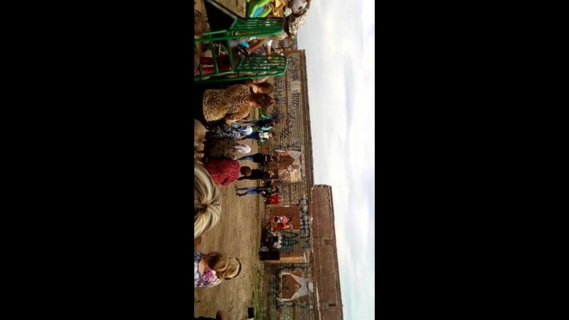 Флешмоб, Девчонки танцуют на Дне Рубежево