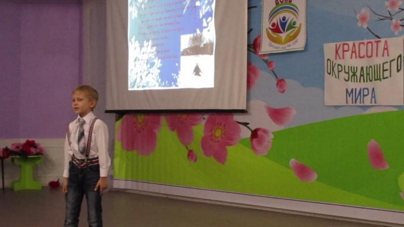 MVI_0034Детская образовательная конференция исследователей (ДОКИ) по теме Красота окружающего мира в 339 детском саду.