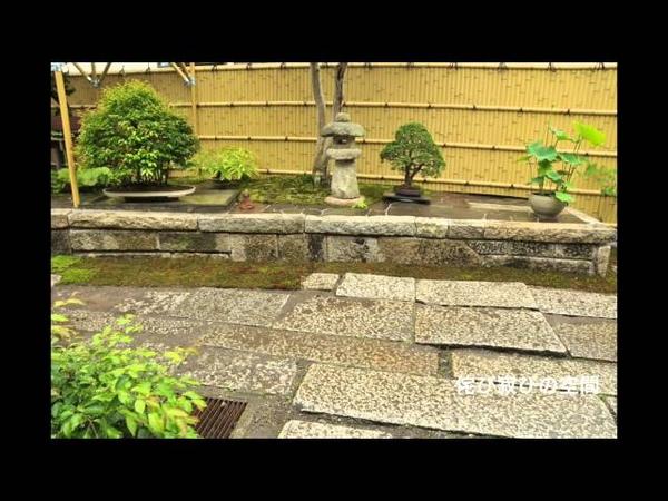 茨城・つくばみらい市 Jpanese garden・bonsai・浴衣・和庭 わにわ