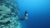Fiji Rainbow Reef Teaser