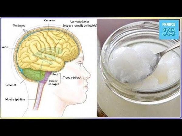 Cet aliment améliore les fonctions cérébrales immédiatement ! - France 365