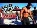 King Gator - Killer Push-ups