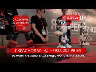Выставка роботов и трансформеров #ЯЛЮБЛЮРОБОТОВ в Краснодаре!
