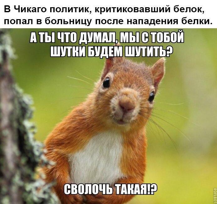 https://pp.vk.me/c543101/v543101950/1e439/LcM_7l20hOY.jpg