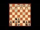 1 e4d5 Скандинавская защита B01 вступление mp4