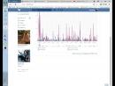 Моя статистика страницы Вконтакте Бесп Макси Это что то то то или Кто то то то