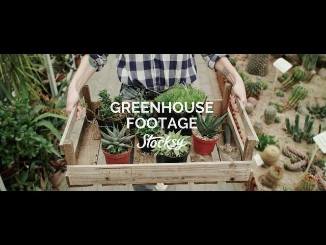 Greenhouse | Footage | Stocksy United | Milles