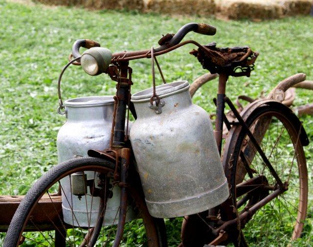 ПДД для велосипедистов: что нужно знать дачникам?
