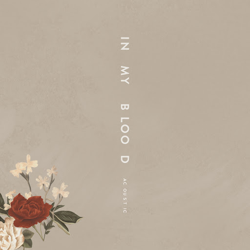 Shawn Mendes album In My Blood (Acoustic)