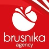 Brusnika Agency