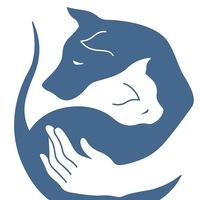 Помощь животным БУДЕННОВСК фото