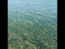 Чёрное море 2018