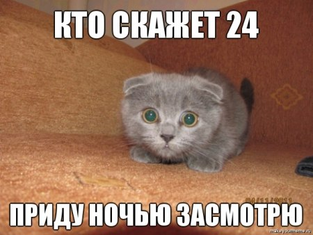 Российские трейдеры