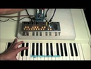MIDI triggered Pocket Piano MIDI Catalinbread Montavillian echo