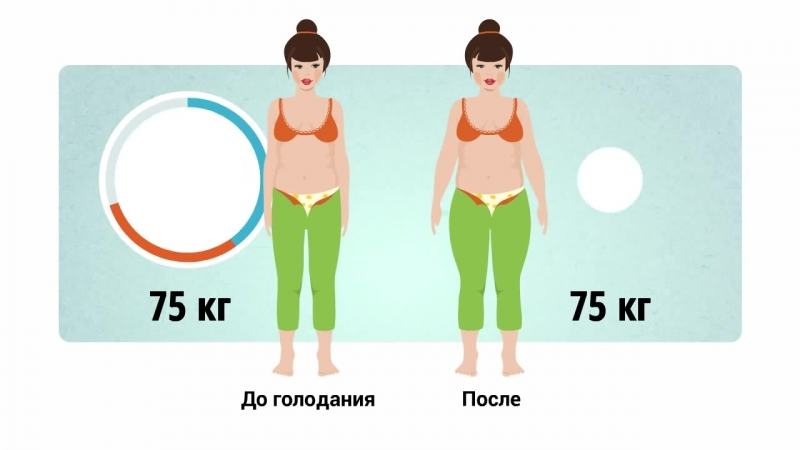 Основы ЗОЖ Как привести тело в порядок