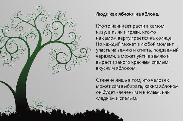 http://cs419629.userapi.com/v419629838/425e/dlDghIHe8SY.jpg