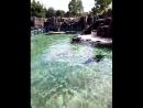 Пражский зоопарк 2018г